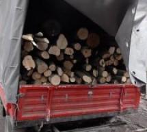 Material lemnos fără documente legale, confiscat de polițiștii bihoreni