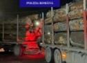 Lemne de foc fără documente legale, confiscate de polițiștii bihoreni