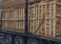 350 de metri cubi de lemne de foc și cherestea de rășinoase, expediați fără documente legale, confiscați valoric de polițiștii bihoreni