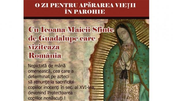 Icoana pelerină a Sfintei Fecioarei de Guadalupe a ajuns în Bihor