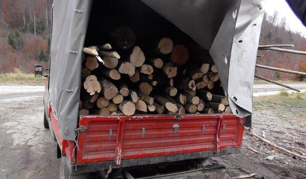 Lemne de foc fără documente legale, confiscate de polițiștii din Finiș