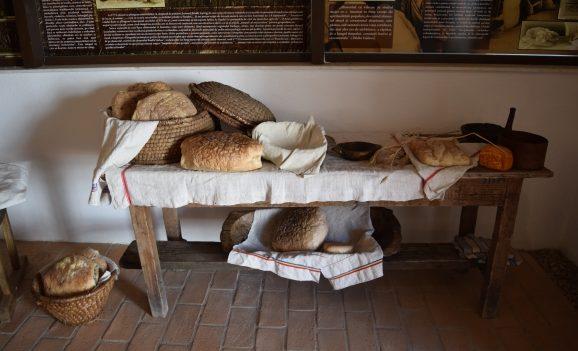Expoziţii la Muzeul Orașului Oradea – Complex Cultural